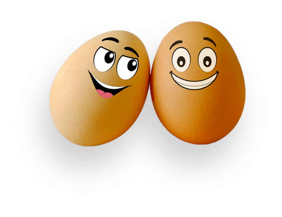 egg-couple